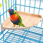 XMSSIT Bird Platform Perch Stand Wood for Small Animals Parrot Parakeet Conure Cockatiel Budgie Gerbil Rat Mouse Chinchilla Hamster Cage Accessories Exercise Toys Sector 9