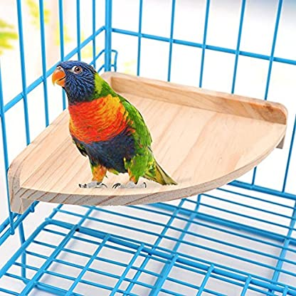 XMSSIT Bird Platform Perch Stand Wood for Small Animals Parrot Parakeet Conure Cockatiel Budgie Gerbil Rat Mouse Chinchilla Hamster Cage Accessories Exercise Toys Sector 2