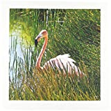 3drose QS _ 10125_ 5Karibik Pink Flamingo,