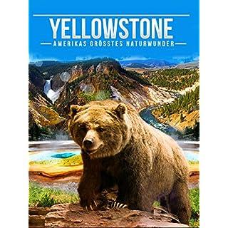 Yellowstone - Amerikas größtes Naturwunder