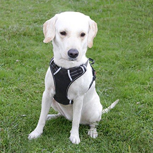 Hundegeschirr, No Pull Hundegeschirr, Brustgeschirr, Verstellbar, Haustierweste für Draußen, 3M Reflektor, Oxford-Weste für Hunde, Einfache Kontrolle, für Mittel Große Hunde
