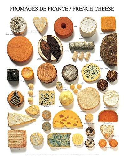 Käse Bild (Poster 40x 50cm Käse De France/French Cheese/Französischer Käse Atelier Neue Bilder)
