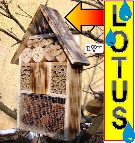 Große Nistkästen XXL Insekten Insektenhotel LOTUS + 2 x Sichtglas + Marienkäferhaus + Schmetterlingshaus - 2