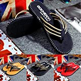 SHOBDW Mens Flip Flops, Men Summer Stripe Sandals Male Slipper Flip Flops Shoes
