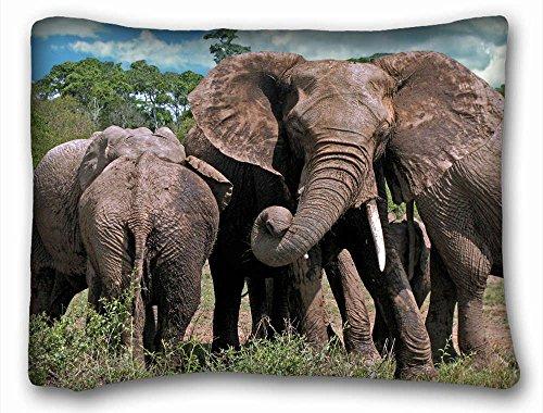 Decorative estándar funda de almohada animales elefantes Familia Animales Grandes Elefantes Familia...
