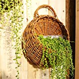 EgBert Blumen-Pflanzer-Wand-Hängender Korb-Dekorative Vasen-Garten-Außeninnenhalter-Inneneinrichtung