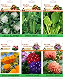 alkarty 3 vegetable and 3 flower seeds k...