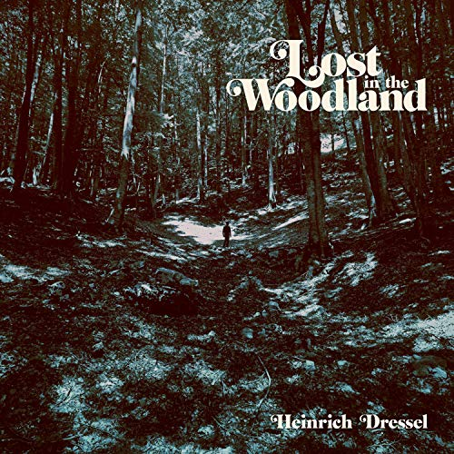 Lost in the Woodland