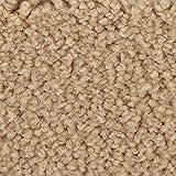 BODENMEISTER BM72182 Teppichboden Auslegware Meterware Hochflor Shaggy Langflor Velour beige hell 400 cm und 500 cm breit, verschiedene Längen, Variante: 6,5 x 5 m