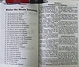 Die Bibel: 1545 Standard Großdruck ohne Apokryphen -