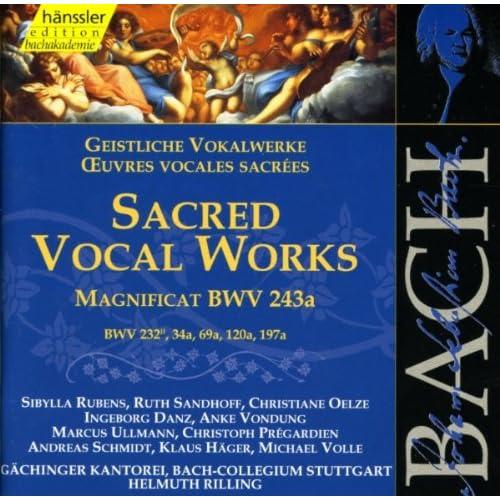 Lobe den Herrn, meine Seele, BWV 69a: Recitative: Gedenk ich nur zuruck (Alto)