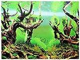 Rückwandfolie 150cm x 60cm Rückwandposter für Aquarien