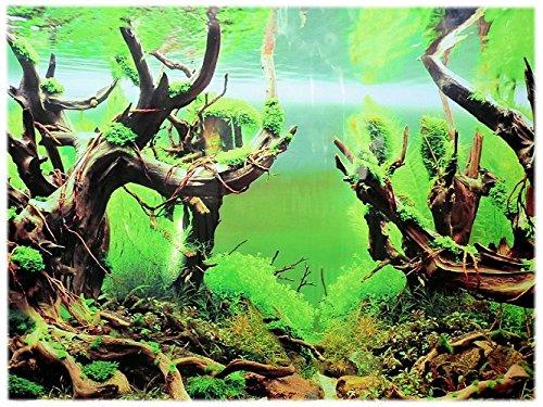 Rückwandfolie 150cm x 50cm Rückwandposter für Aquarien