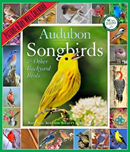 Audubon 365 Songbirds & Other Backyard Birds 2013 (Picture a Day Wall Calendar)