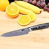 Kitchen Emperor Couteaux à Fruits et à Légumes Couteau Paring Couteau à Fruits Couteau de Cuisine Acier Inoxydable avec Boîte