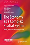 The Economy as a Complex Spatial System: Macro, Meso and Micro Perspectives (Springer Proceedings in Complexity) (English Edition)