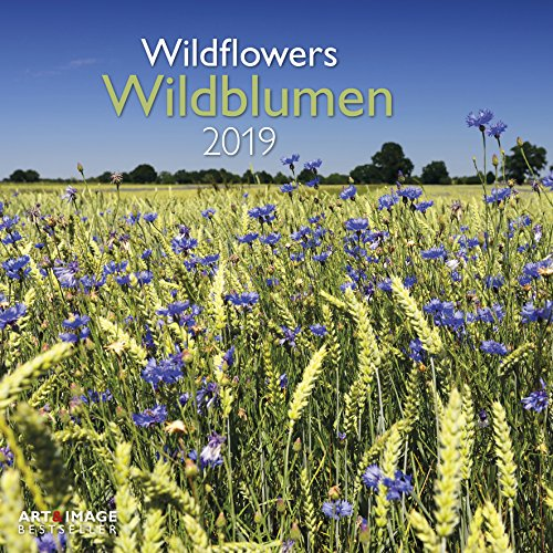 Wildblumen 2019: Wandkalender