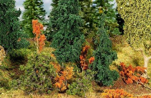 all-arbusti-sottobosco