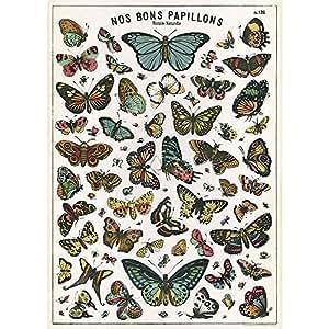 cavallini papers co papier cadeau planche papillons fournitures de bureau. Black Bedroom Furniture Sets. Home Design Ideas