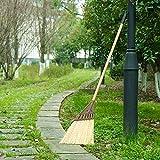 Ginestra giardino all'aperto di spazzamento scopa a setole della scopa per esterni di spazzamento sweepery ginestra attrezzi da giardino