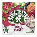 Elephant Infusion Fruits Rouges