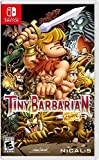 Tiny Barbarian DX NSW