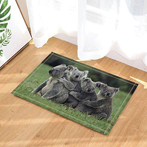 cdhbh Safari, wildanimal Faultier, Gras, zum Schutz von Teppich/Fußmatte, Rutschfest, Eingangsmatte für den Innenbereich, für Badezimmer, Kids, 15,7x 23.6in - Badezimmer Gras-teppich