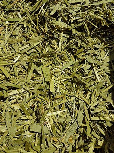 Bio-Grünhafer Grünhafer grüner Hafer Hafergras Terra-Pura 2 kg TOP Qualität