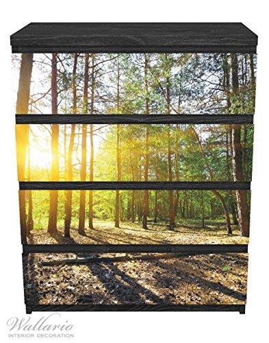 Wallario Möbelfolie / Aufkleber, geeignet für Ikea Malm Kommode - Sonnenstrahlen tief hinter dem Wald mit 4 Schubfächern (Kiefern-aufkleber)