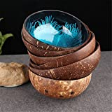 Decorative Bowl, Essort Natural Coconut Shell Bowl Dishes Mosaic Handmade Kitchen Paint Craft Home Decorate Blue