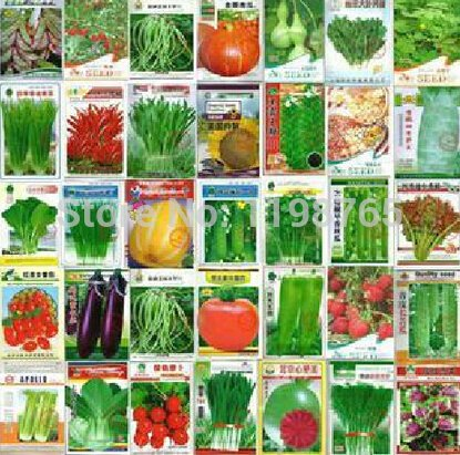 500pcs 5 types Aubergine Carotte Concombre Pepper Tomato famille de semences de légumes en pot balcon jardin