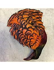 veniard Amherst Faisan N ° 2tête orange Fly attacher les plumes