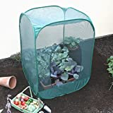 Pop-Up Brassica Cage