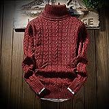 YFF Männer mit hohem Kragen Bodenbildung Pullover Farbe