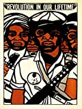 PROPAGANDA POLITICAL CIVIL RIGHTS BLACK PANTHER PARTY AFRICAN AMERICAN REVOLUTION 18x24 INCH ART POSTER PRINT PICTURE LV6965