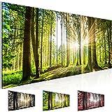 Bilder 100 x 40 cm - Wald Bild - Vlies Leinwand - Kunstdrucke -Wandbild - XXL Format - mehrere Farben und Größen im Shop - Fertig Aufgespannt !!! 100% MADE IN GERMANY !!! - 503812b