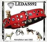 LEDASS92 - Hundehalsband Riva Lederhalsband, Halsband Strasshalsband für Hunde aus echtem Leder mit Swarovski Elements Lederfarbe: Rot, Verschiedene Größen (Hundehalsumfang 35cm - 40cm)