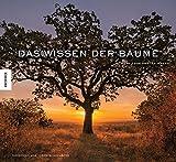 Das Wissen der Bäume: 59 Porträts der ältesten und legendärsten Bäume der Welt (Medizin, Esoterik, Spiritualität, Kulturgeschichte, Geheimnisse, Leben, weise)