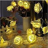 Dream Loom Weihnachten Dekorative Lichterketten, 4M 40 LED-Lampen Rosen-Blumen-Fee-Schnur-Lampen Batteriebetrieben für Hochzeit Halloween Patio Party Garten Indoor-und Outdoor-Dekor (Warmweiß)