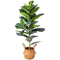 Ferrgoal Plantes Artificielles Fiddle Leaf Figuier Hauteur 100cm Tropical Palmier Fausse Ficus Lyrata Plante Artificiel…