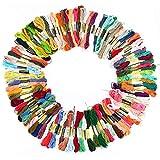 Hilos Punto de Cruz DMC Hilos para Pulseras de la Amistad con 100 Madejas 8 metros 6 hebras de Ramas(multicolor)