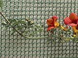 Rechteckiges Gartennetz von Apollo mit einer Maschenweite von 15 mm.