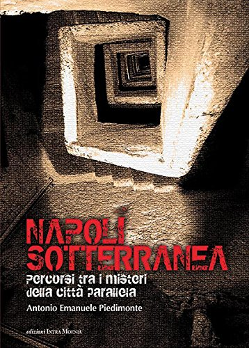 Napoli sotterranea. Percorsi tra i misteri della citt parallela