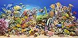 Puzzle 4000 Teile - Unterwasser - Fische Korallenriff - Fisch Koralle Wasser Meer Taucher Lagune Meerestiere Rochen / Panorama Panoramapuzzle