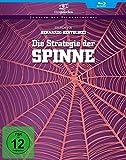 Die Strategie der Spinne (Filmjuwelen) [Blu-ray]