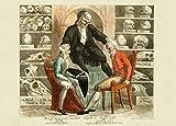 Vintage Anatomy Frenologia Frenologia test, Satire dal 1800's 250gsm lucido arte della riproduzione A3poster