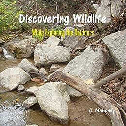 Discovering Wildlife While Exploring The Outdoors por C. Mahoney epub