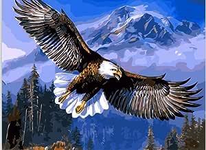 WOWDECOR Voler Aigle Chauve Sommet de Montagne DIY Peinture par Numero Paint by Numbers Peinture Num/éro Adulte Enfant