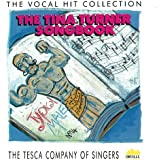 Choir Versions / Chorus Versions of Tina Turner Hits - ideal für Theater Produktionen Playback, Strassenfest Coverbands etc. (CD Album, 15 Tracks)