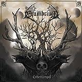 Equilibrium: Erdentempel [White] [Vinyl LP] (Vinyl)